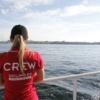 Saling.ee - Crew